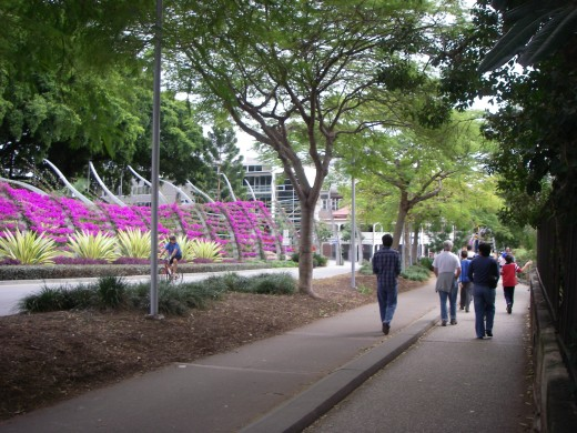 Trees and flowers on a Brisbane Southbank pathway