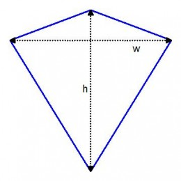 what shape  is a kite