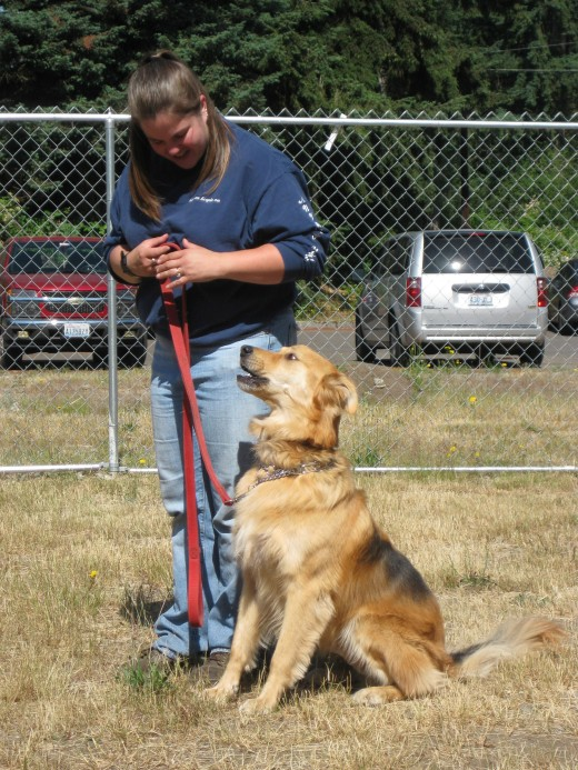 "Family Dog Training Center ... ""Photo Courtesy of U.S. Army"""