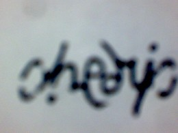 "An ambigram of my nickname, ""chedric"".  It reads the same after 180 degrees of rotation."