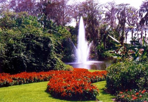 Cypress Gardens