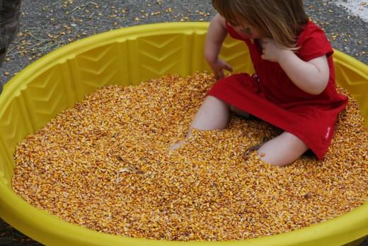 Corn box.