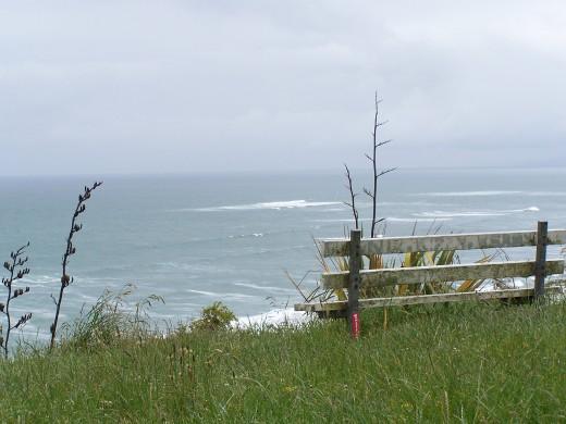 Surfing spot at Raglan