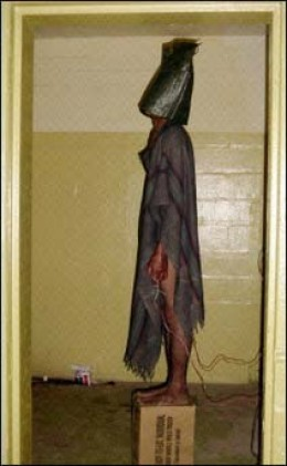 This infamous picture is one of many that implicated the US military in practicing torture.