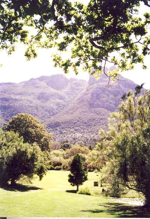A view of the National Botanical Garden Kirstenbosch, where much research into the fynbos vegetation is done.