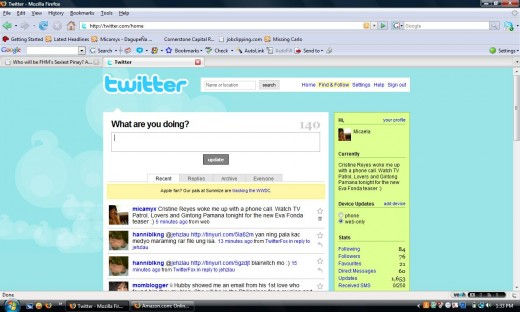 Take a Glimpse on the Twitter Interface