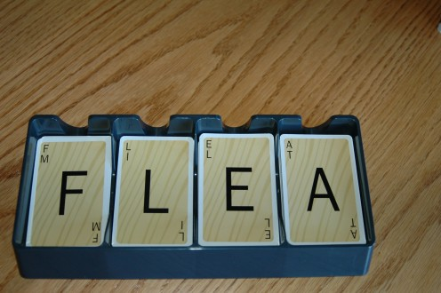 Player added F to spell FLEA