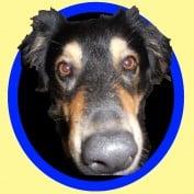 MoRita profile image