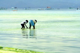boys playing by the sea, a water form