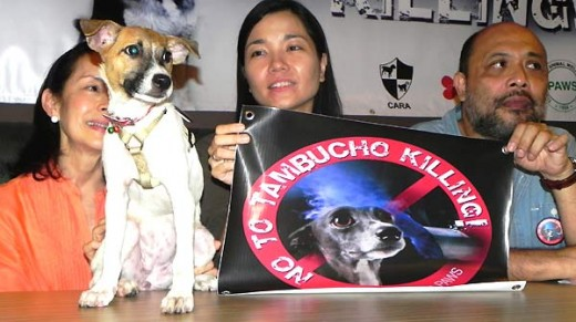 "Megan, who was rescued from the streets of Quezon City, is the ""poster dog"" of the ""No to Tambucho Killing"" campaign. With her are (left to right) Nancy Cu Unjieng of CARA, Anna Cabrera of PAWS and Luis Buenaflor of AKF. Photo courtesy of PAWS"