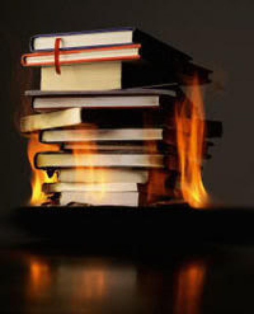 The idea for a novel is burning in your mind.