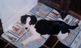 Erin at sixteen weeks