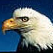 illeagle profile image