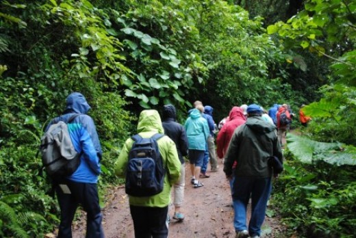 Guided tour of the Monteverde Cloud Forest with my Swiss Travel Costa Rica group
