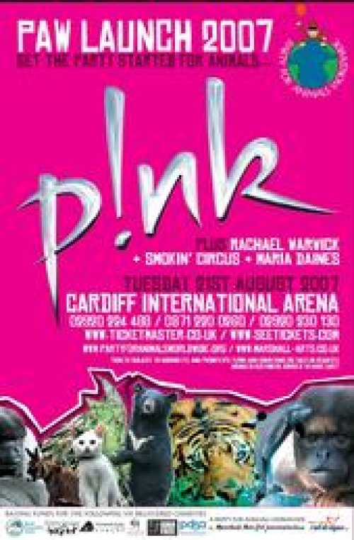 Maria Daines supports Pink at Cardiff Arena