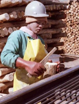 South African sawmill worker. Photo by Tony McGregor