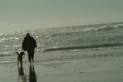 A long walk on the beach helps to quell the heartbreak and increase the bond between human and K9 companion.