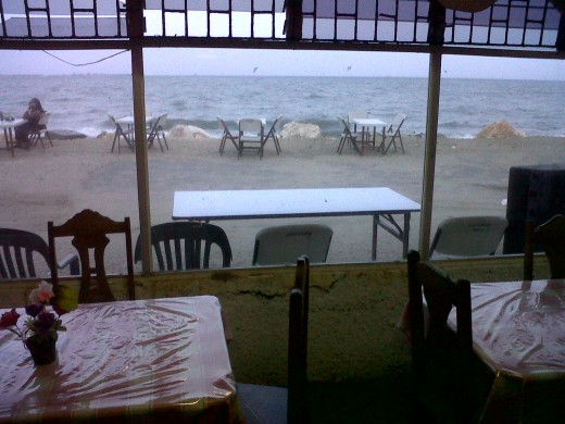 View from inside main dining room.
