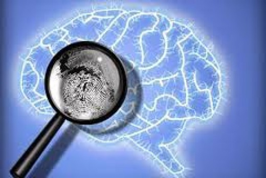 forensic psychology - criminology diploma 11. | hubpages, Human Body