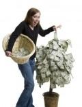 Abundance - Having a Money Tree