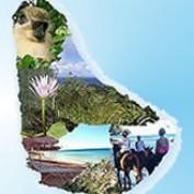 Barbados.org profile image