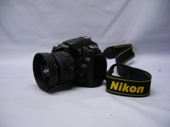 Nikon D80 DSLR Camera Monitor Blinks, Flashes Black in Much of the Display