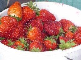 Fruit is tasty, healthy and easy to pack for a picnic