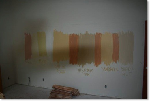 feel free to paint the samples directly on the wall - better if your wall is currently white