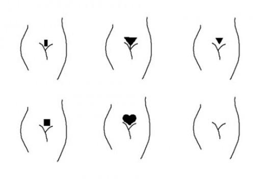 Brazilian Bikini Laser Hair Removal (femtalks.com)