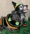 Crochet Pet Costumes
