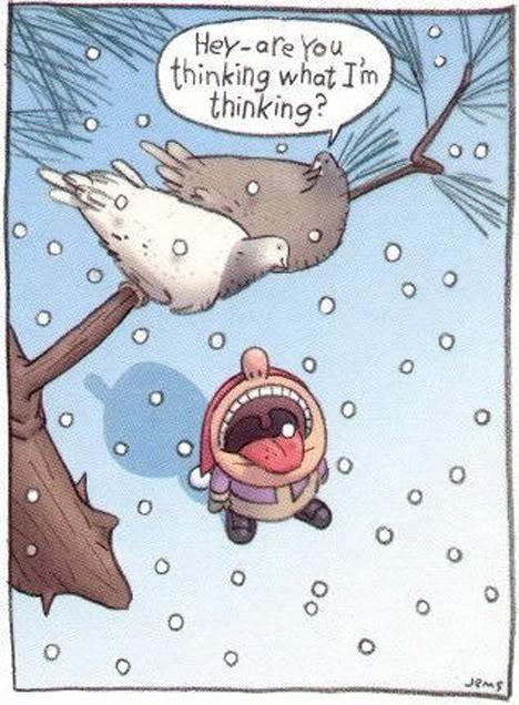 have a good laugh!