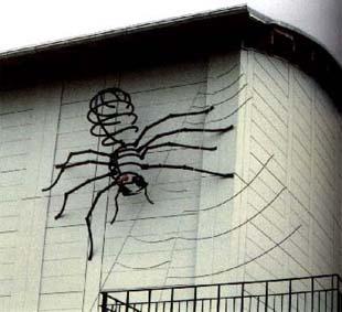 Spider - Zurich University (Switzerland)