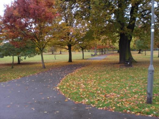 Autumn, 2009