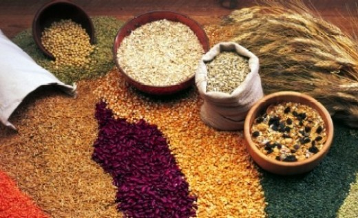 Whole grains - excellent source of fibre, protein and B vitamins, Vitamin E, magnesium, and iron.
