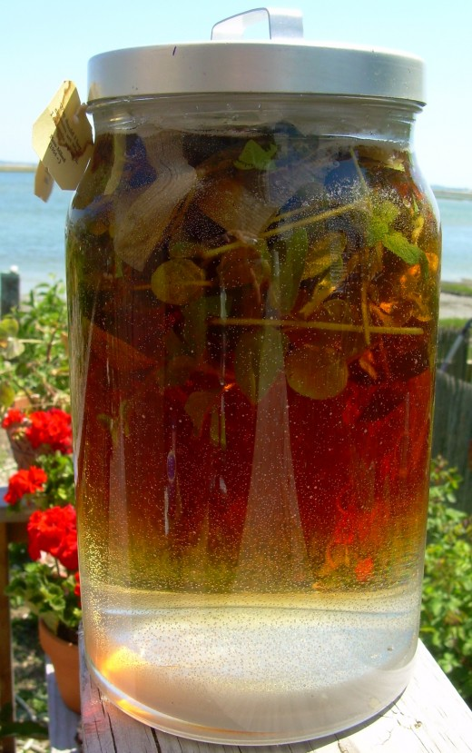"sun tea set out to ""brew"" in the sun at my friend Fran's house"