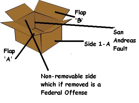 The cardboard box and how to fold it.