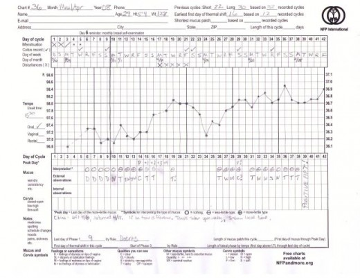 Standard NFP Chart used to track fertility signs.  It can be downloaded at www.nfpandmore.org
