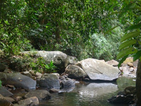 Fresh water stream near the Retreat with plenty of bathing spots deep enough for a swim