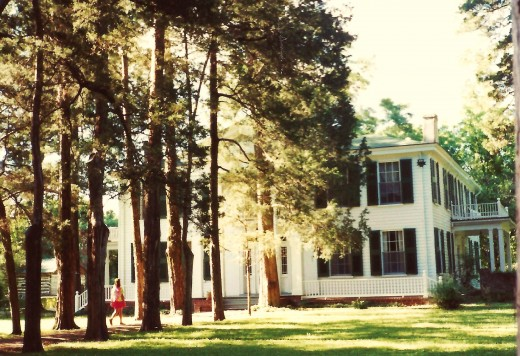 Another view of Rowan Oak