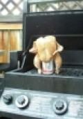 Drunk chicken?