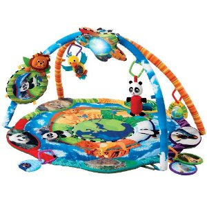 image is found at amazon -- Baby Einstein Around The World Play Gym