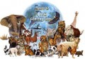 Noah: One of Many Animal Hoarders Throughout History