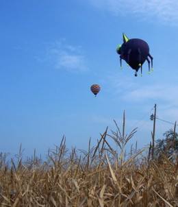 Is it a UFO? No just a hot air balloon at the Annual UFO Days-Fyffe AL