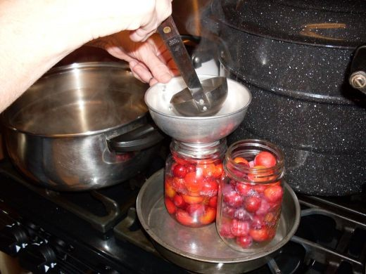 """Using a canning funnel, if desired, ladle hot syrup into hot jars, leaving 1/2"""" headspace."""