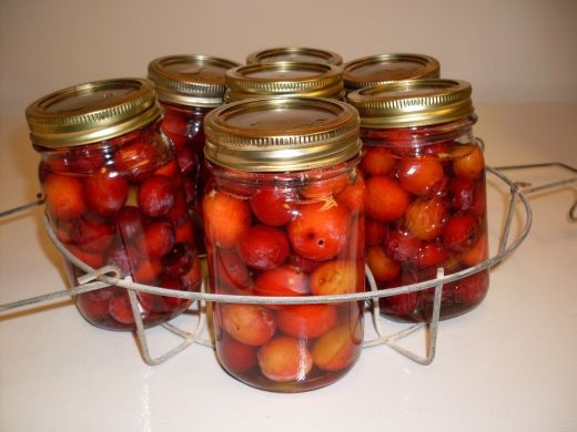 Filled jars ready to go into canner.