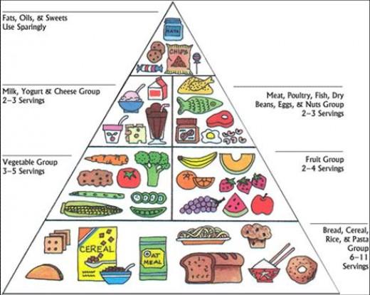 Bodybuilding Tips Low Fat Foods List