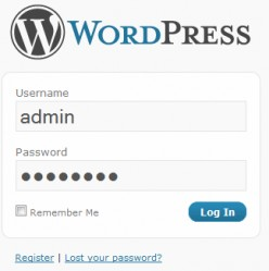 WordPress - Your Very First Website Page