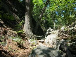 Hemlock Knoll Trail.