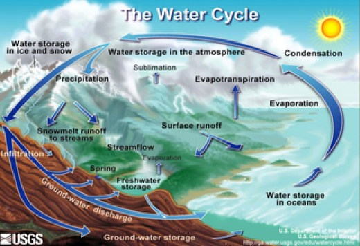 Now here is the Water Cycle in detail.