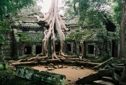 Ta Prohm , Angkor, Cambodia